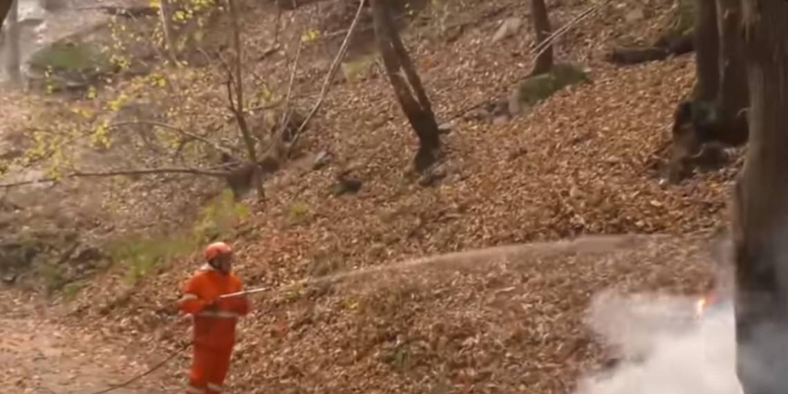 Incendi in Piemonte, Pd: sospendere la caccia oltre il 5 novembre